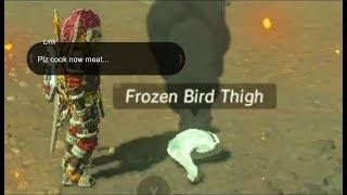 Can you cook frozen meat??? - Zelda BotW