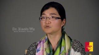 '2016 Outstanding Faculty Recipient - Dr. Xiaolu Wu