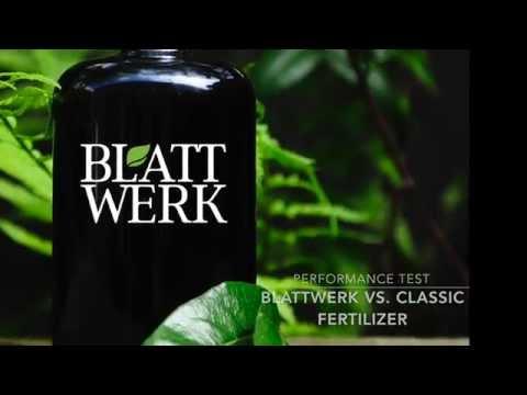 Blattwerk Performance Test with Peas - 151,5 % Increase