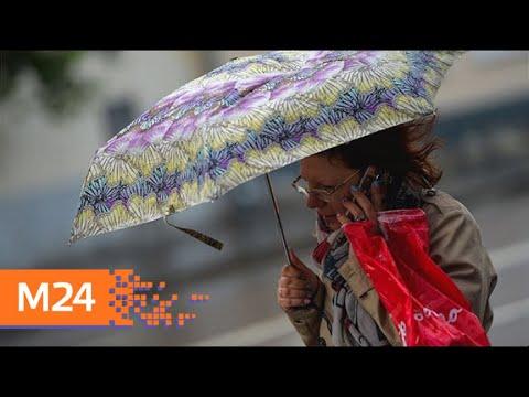 В среду в столице сохранится дождливая погода - Москва 24