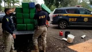 Três toneladas da maconha são apreendidas pela PRF em Lajeado