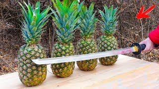 EXPERIMENT: Katana VS Pineapples