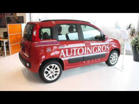 Auto Usate Fiat Panda Torino