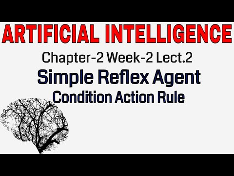 Artificial Intelligence | Types of Agent | Simple Reflex Agent | Condition action rule