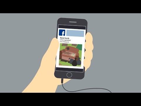Littergram - Mobile App Explainer Animation