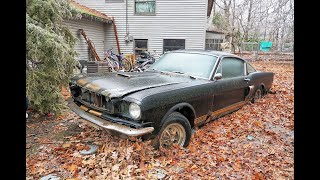 Found: 1966 Shelby Mustang GT350H sunk in Ohio backyard 40 years