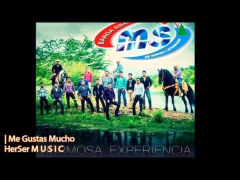 Me Gustas Mucho - Banda MS (CD 10° Aniversario: Hermosa Experiencia / 2013)