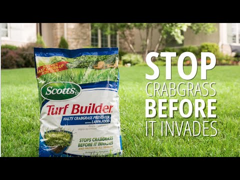 Preventing Crabgrass with Scotts® Turf Builder® Halts® Crabgrass Preventer with Lawn Food