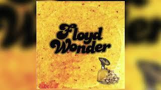 FLOYD WONDER -