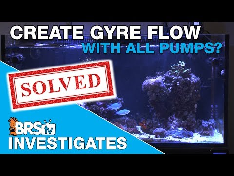Is the Maxspect Gyre pump the only way to create gyre flow in my tank? | BRStv Investigates