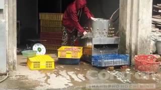 Kinh hãi hàng ngàn con gà bị nhúng nước sôi làm mồi cho rắn - Cuacamauhd.com