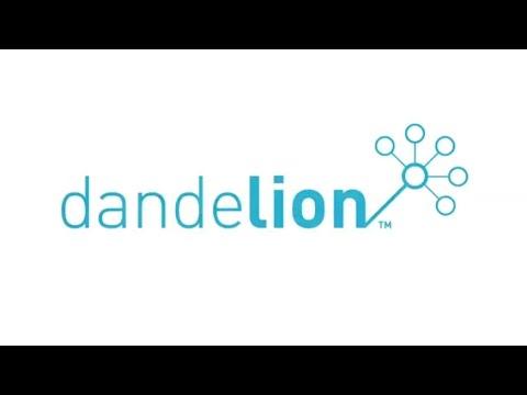 Dandelion Video concept - The first italian Data Market by Spaziodati