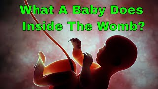 Any idea what a baby does inside the womb? Read the facts you might not be knowing