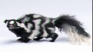 skunk second season 1 episode 6