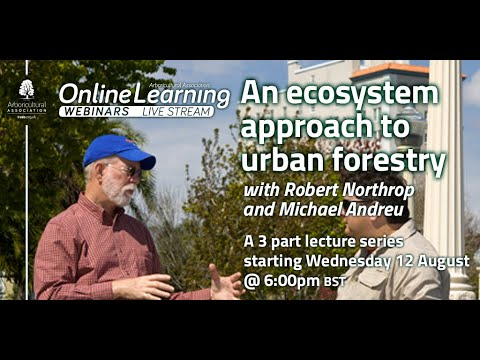 An ecosystem approach to urban forestry, Part 1 (With Robert Northrop and Michael Andreu)
