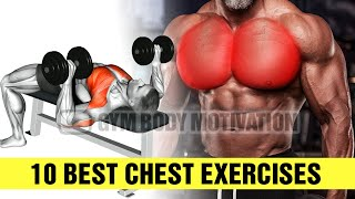 10 Best Chest Exercises YOU Should Be Doing