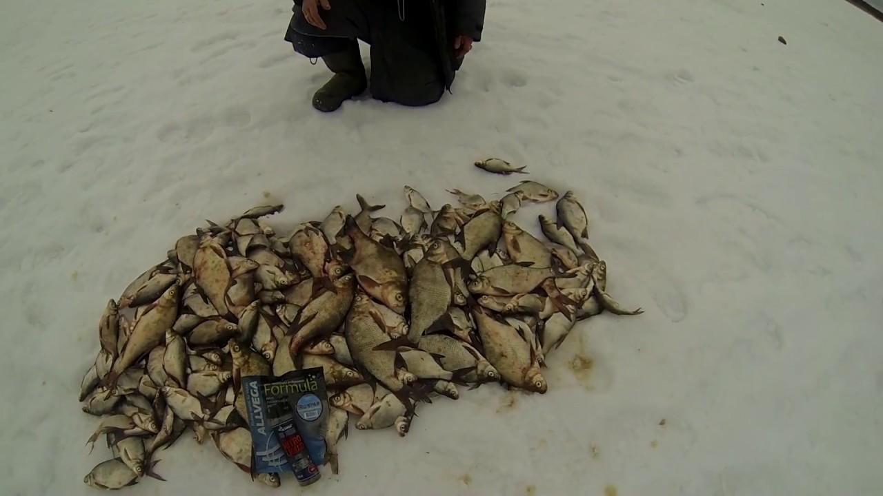 Зимняя ловля подлещика на иркутском водохранилище