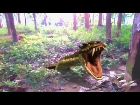 Short Film Big Anaconda Snake in Real Life Adventure