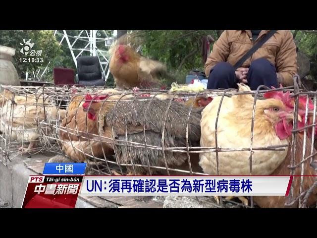中國江蘇出現H10N3禽傳人 全球首例