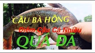 Share Bãi Câu Cá Lớn Nhiều Gần Sài Gòn- Bình Dương Cho Anh Em Cần Thủ