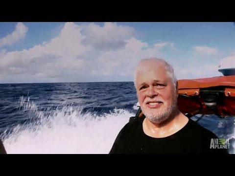 The Return Of Paul Watson   Whale Wars - Smashpipe Entertainment