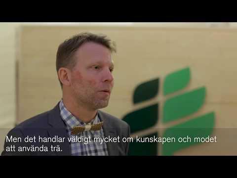 Årets träfluga 2017 - Intervju med vinnaren Gustav Ahlford