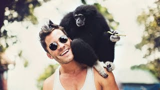 #FUNNY MONKEYS #ANIMAL WORLD  If you see this video, you will laugh.