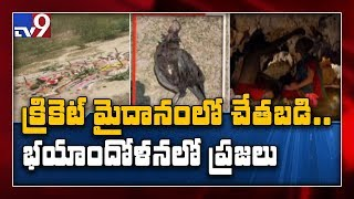 Nellore: Black magic rituals in cricket stadium, tension p..