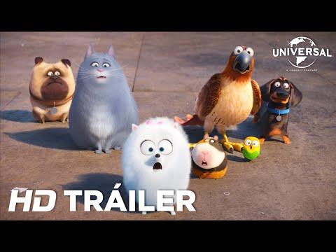 Mascotas: Tráiler 2 (Universal Pictures) [HD]