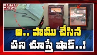 Bizzare! Snake enters into a bank ATM, video goes viral..