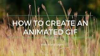 How to Create an Animated GIF