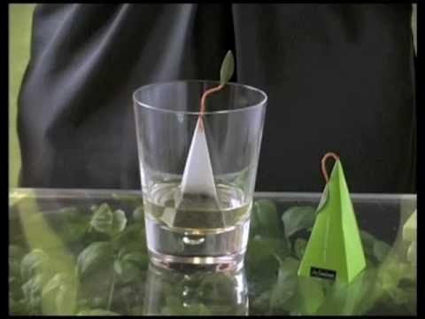 Lemongrass Gin & Tonic by Tea Forté