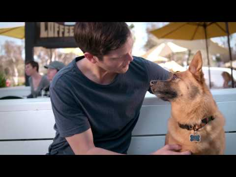 Pet Cancer Awareness 2017 | Blue Buffalo Foundation