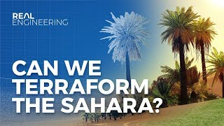 Can We Terraform the Sahara to Stop Climate Change?