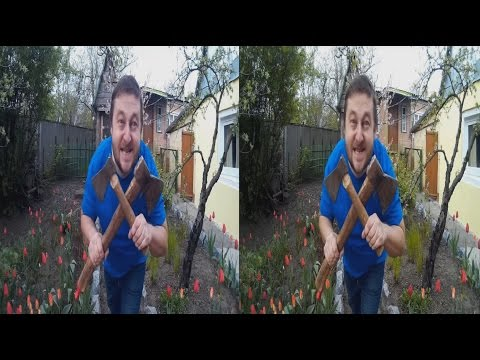 Village Idiot in 3D! Garden Lawlessness. 3D VIDEO