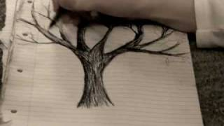 how to draw exactly what you see