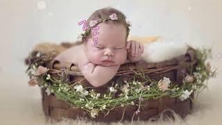 Lullaby Mozart Bedtime Music 🎵 Mozart for Babies Brain Development 🎵094