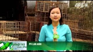 VTC14_Về làng buôn chó lớn nhất Việt Nam