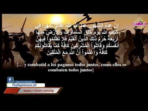 الحرب فى الاسلام la guerra en El Islam