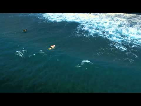 "Wong Doody Air New Zealand ""Best Surfing Spots"" - EM008212"