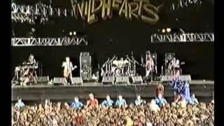 The Wildhearts Live at Donington + Reading 1994