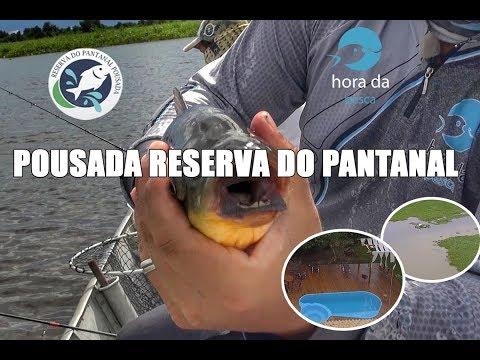 Pescaria de Piau 2019 - Programa Hora da Pesca
