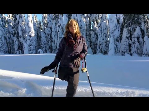 Snowshoeing with SideStix