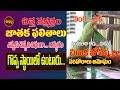 చిత్త నక్షత్రం చిలుక జోస్యం| ARDRA NAKSHATRAM 2021 | CHILUKA JOSYAM | PARROT ASTROLOGY | SHUBHAM TV