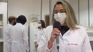 Descarte irregular das sacolas plásticas acaba interferindo no meio ambiente   Jornal da Cidade