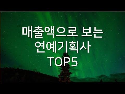 매출액으로 보는  연예기획사  TOP5