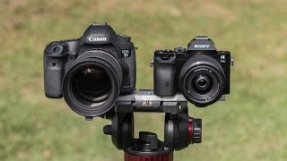 Sony A7s vs Canon 5D Mark III - The 5D has finally met its match