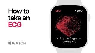 Apple Watch Series 4 — How to take an ECG — Apple