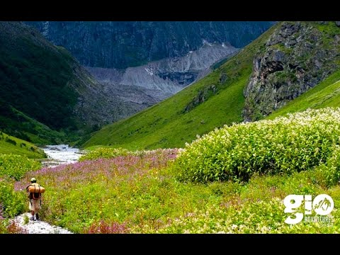 Valley of Flowers & Hemkund Sahib - GIO Adventures