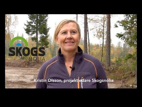 Inför Skogsnolia 2018 – med projektledare Kristin Olsson